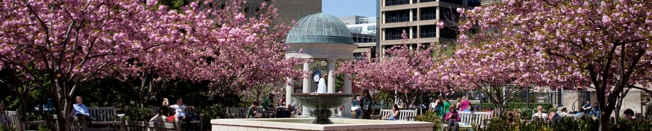 Image of the Tempietto in Kogan Plaza during cherry blossom season